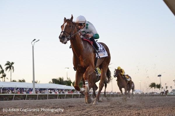 Kentucky Derby Horse Profile: Promises Fulfilled