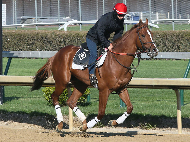 Promises Fulfilled Breezes Half-Mile in :49 at Churchill Downs