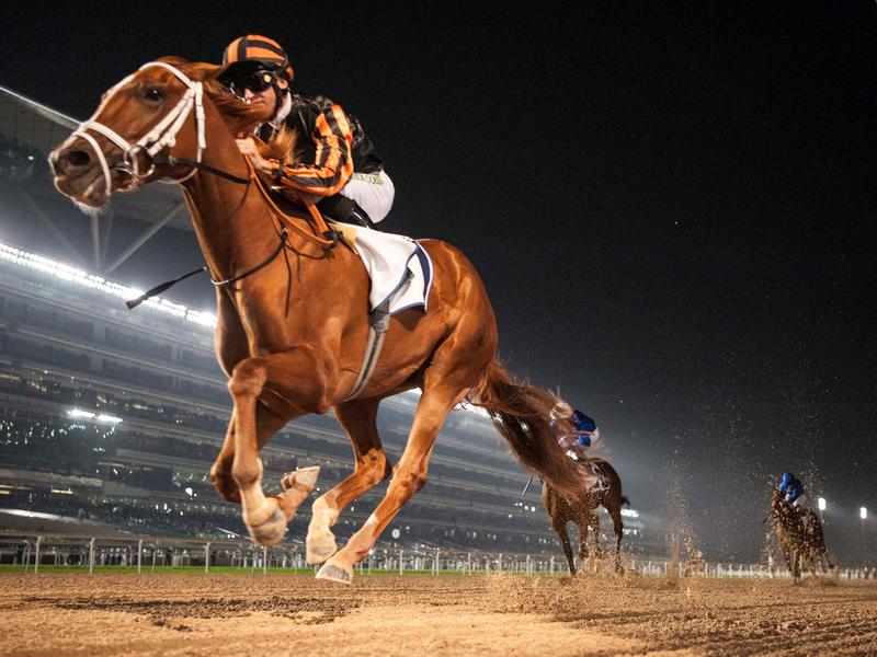 Rayya romps in UAE Oaks, could be Kentucky-bound after UAE Derby