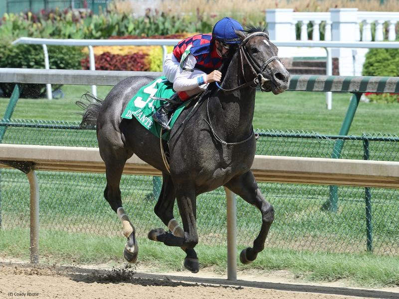 Restless Rider heads eight-horse field in Golden Rod