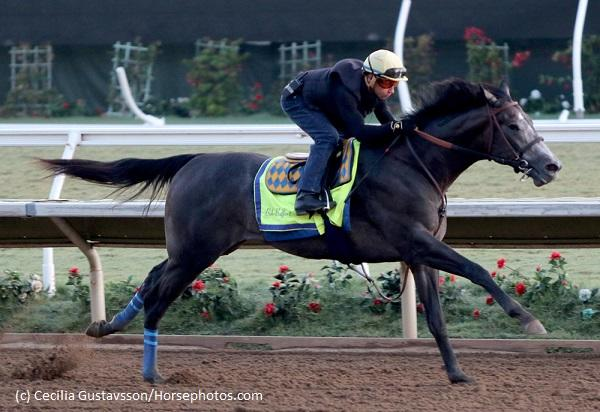 Early Kentucky Derby contenders… News Image