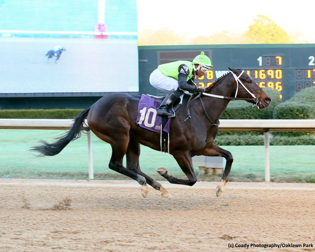 Share the Upside romps in an Oaklawn Park allowance on January 27, 2019