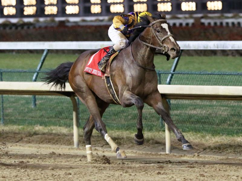 Signalman sends message in Kentucky Jockey Club