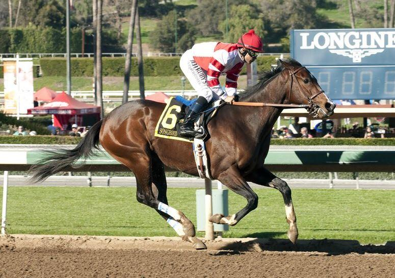 Songbird continues division domination in Las Virgenes