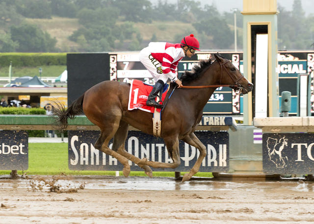 Songbird remains perfect in… News Image