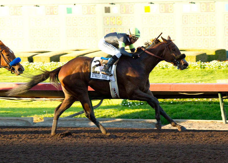 ​Street Fancy upsets Starlet