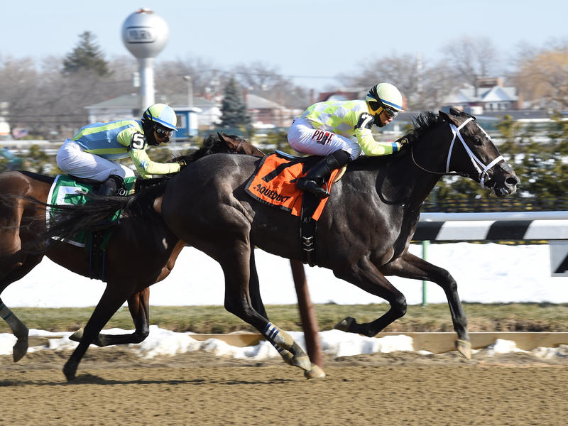 Sunny Ridge enhances Kentucky Derby credentials in Withers