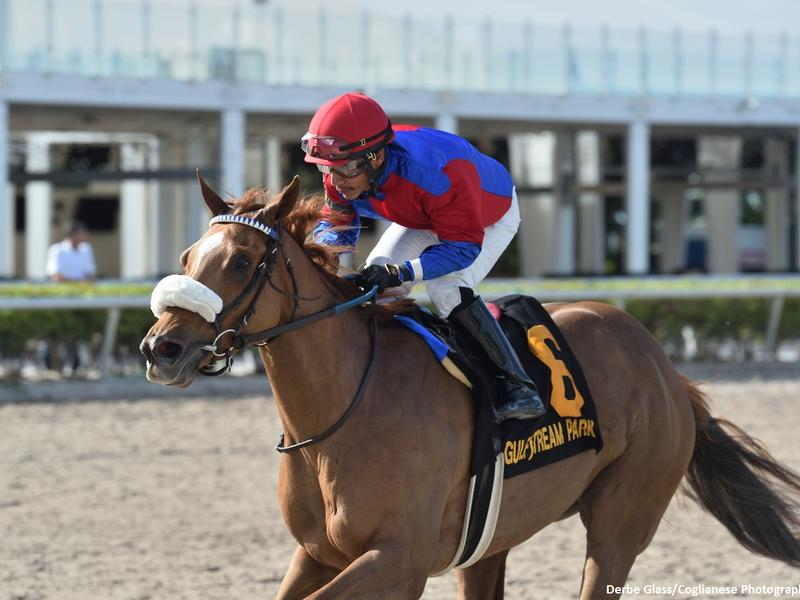 Swiss Skydiver wins the 2020 Gulfstream Park Oaks