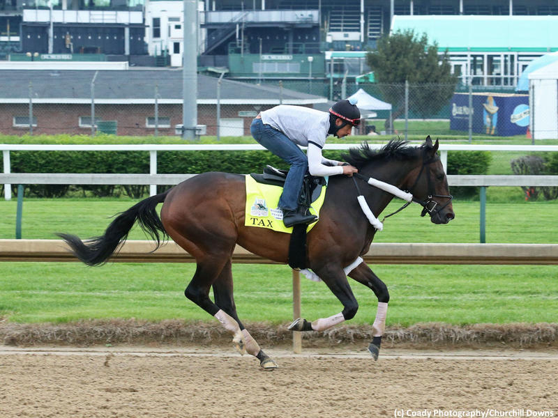 Tax faces five in the Jim Dandy Stakes (G2)