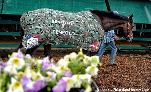 Karma says either Lone Sailor or Tenfold will win the 2018 Preakness on Armed Forces Day