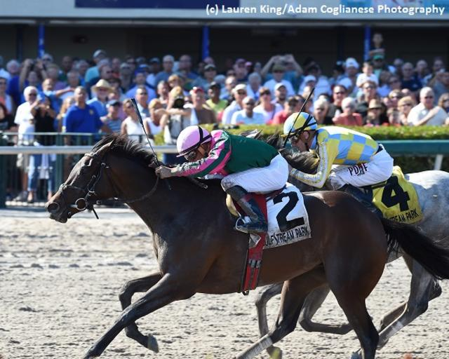 Tequilita tries to keep win streak going in Gulfstream Park Oaks