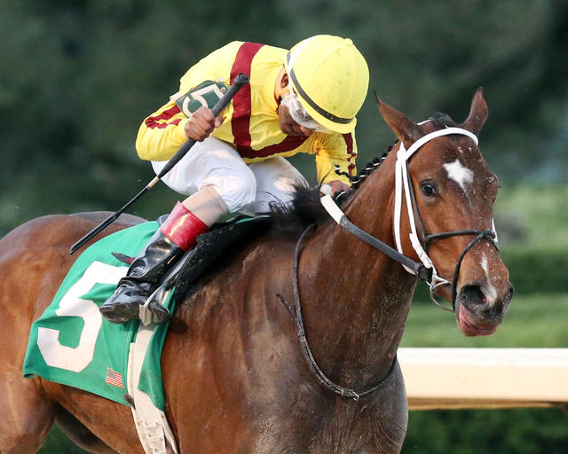 Terra Promessa wins stakes… News Image