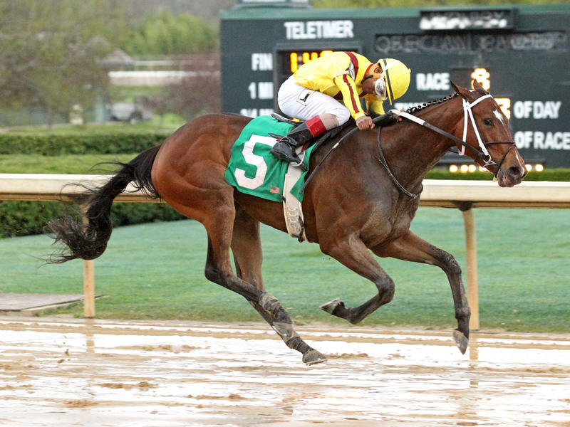 Terra Promessa seeking fourth straight in Fantasy