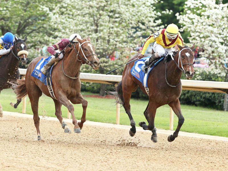 Terra Promessa, Taxable give Asmussen one-two finish in Fantasy