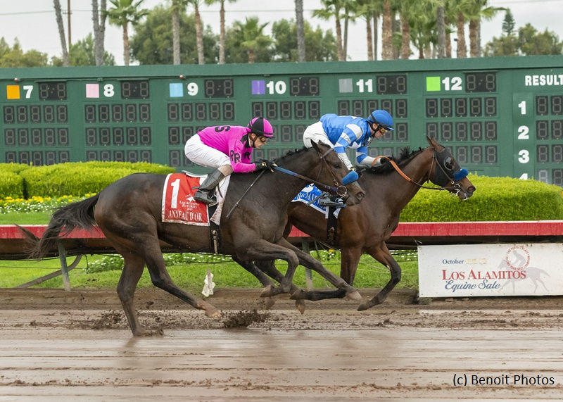 Thousand Words wins Los Alamitos Futurity