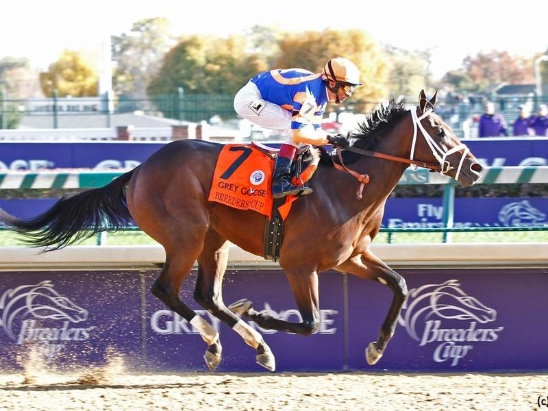 The Breeders' Cup Juvenile and Churchill Downs