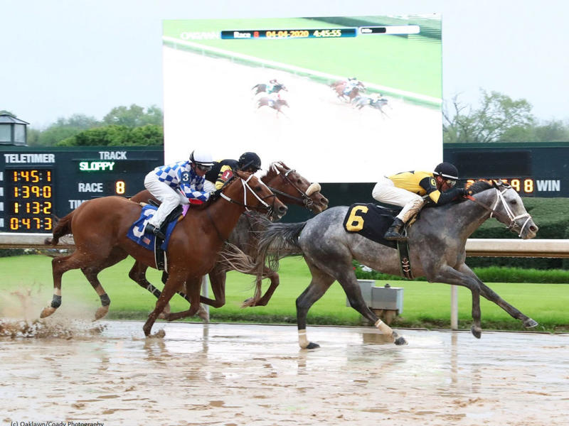 Winning Impression in front at Oaklawn