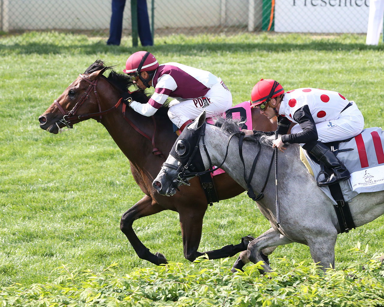 Kentucky Derby Day Undercard Stakes Advances