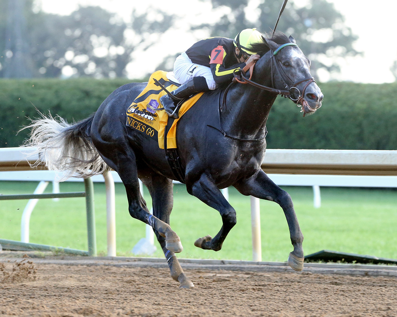 The Breeders Futurity Is The Expert Pick Of The Week