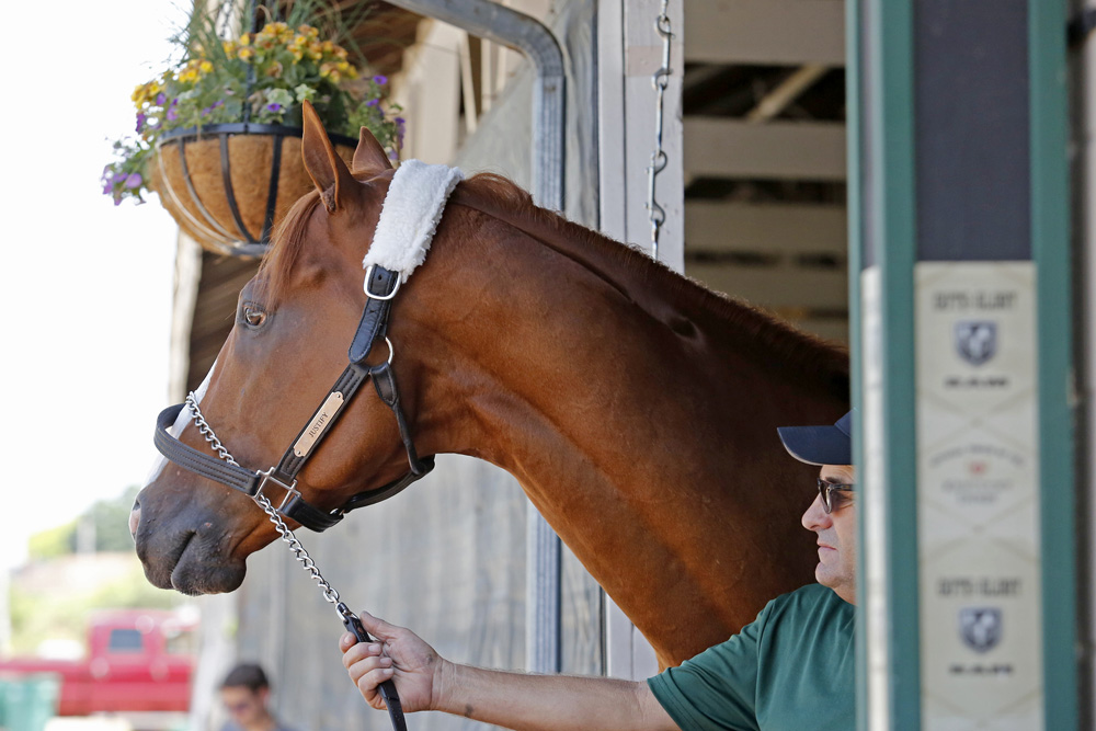 Justify Draws The Rail And Installed As 4 5 Favorite In