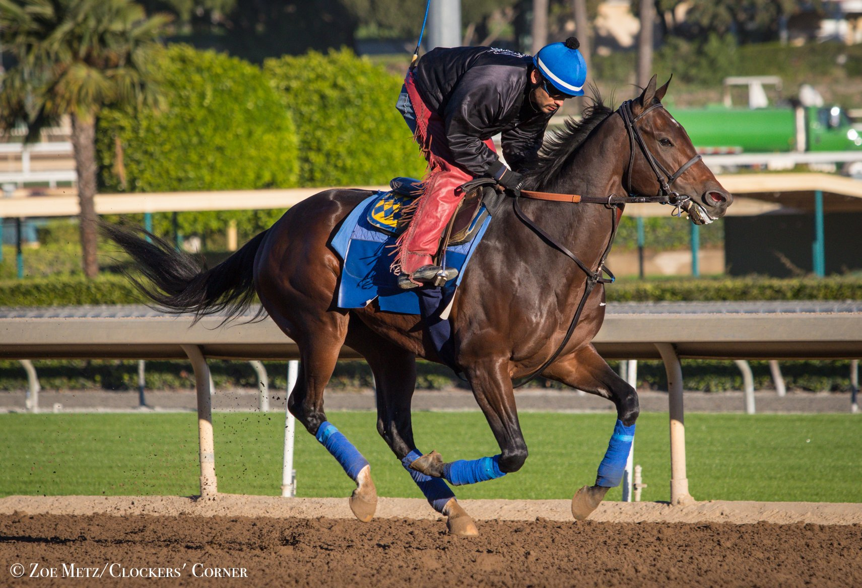 McKinzie favored to give Baffert… News Image