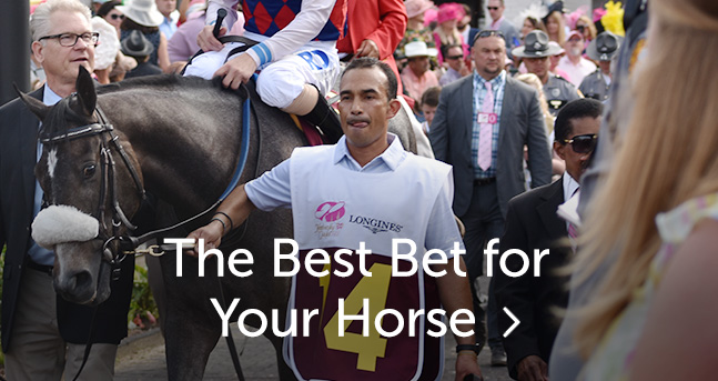 What if you bet 50 dollars on a show ticket at the kentucy derby winner tab nz mobile bettingworld