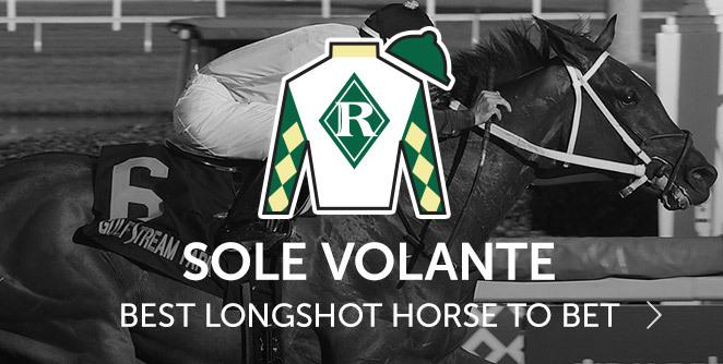 Race horse betting calculator cost unterwellenborn betting calculator